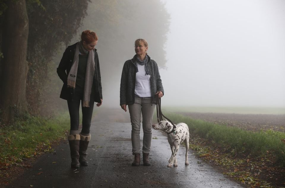 Einzelstunde im Kompaktkurs der Hundeschule Body Talk